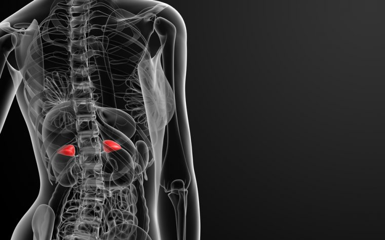 Sarcoidosis May Cause Adrenal Gland Insufficiency