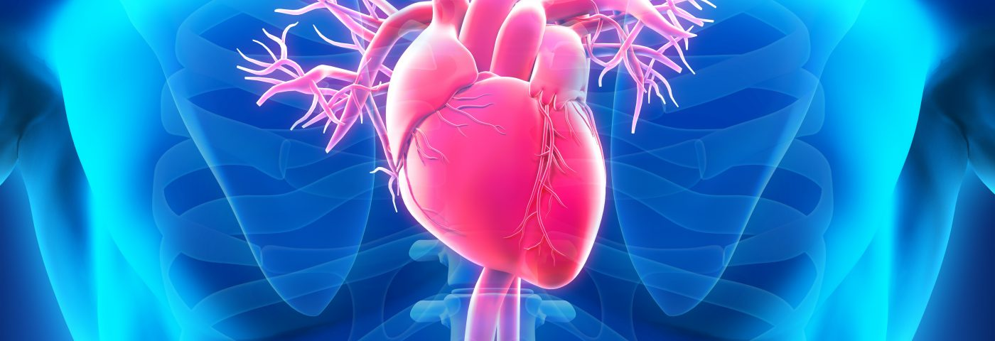 Heart Transplant a Viable Option for Cardiac Sarcoidosis Patients, Study Finds