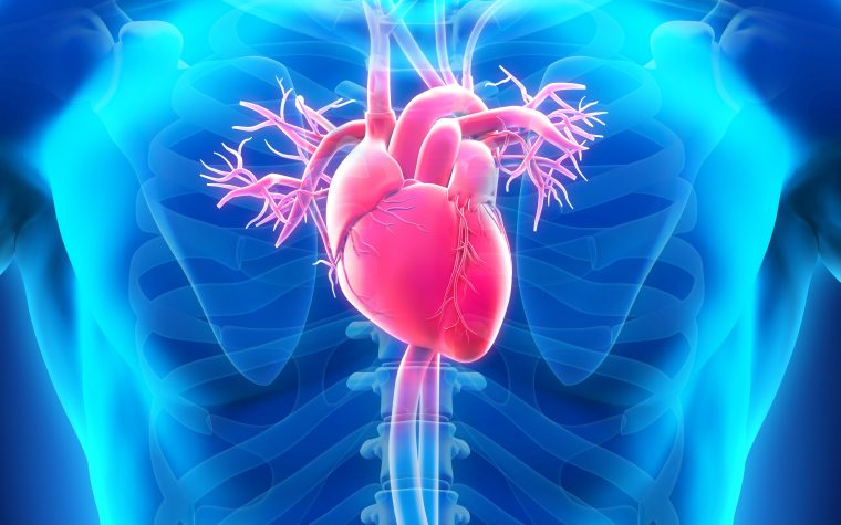 heart transplant in CS patients