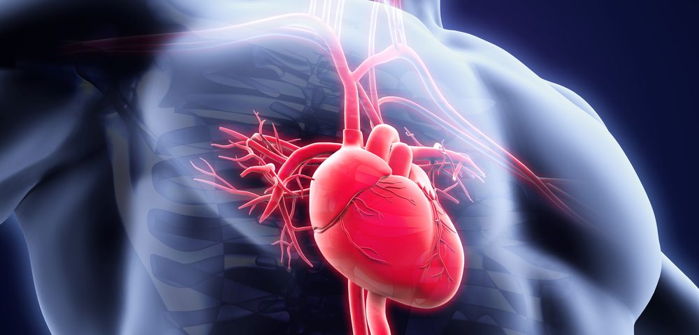Inflammation of Heart Muscle in Sarcoidosis Negatively Affects Coronary Circulation