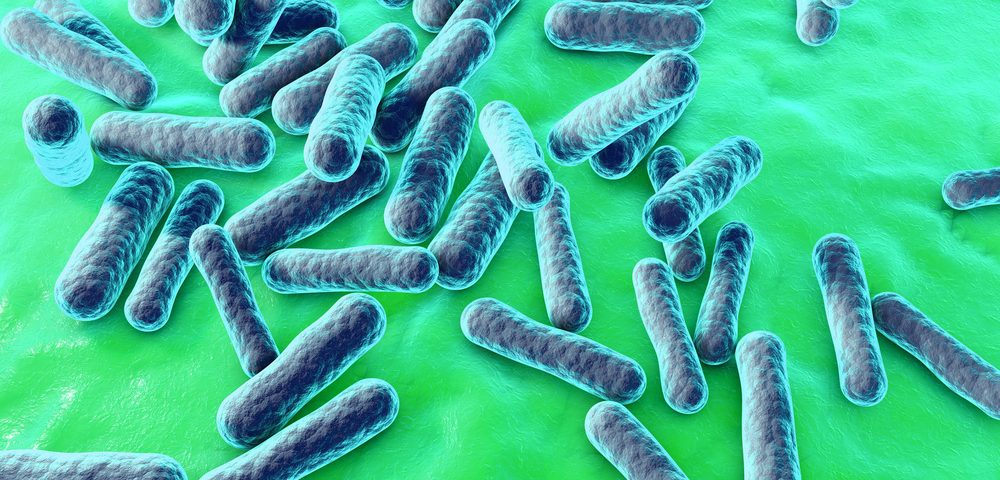 Higher Numbers of 2 Bacteria Species Found in Sarcoidosis Patients, Study Finds