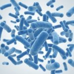 bacteria and mortality